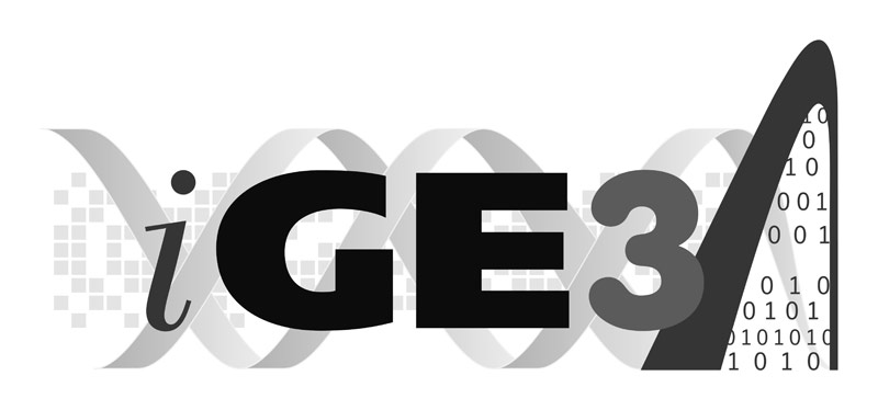 Grayscale version of iGE3 logo