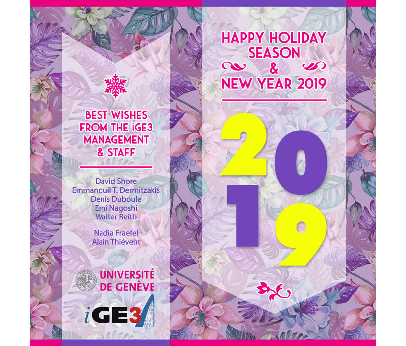 Best wishes 2019 card